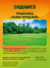 Газонная трава САДОВИТА Газон городской 0,5 кг