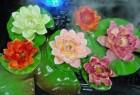 Растение декоративное Водная лилия 10,5см, белый HY03