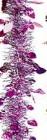 Мишура Лесная М0707 розовый+серебро перфор. 2 *25