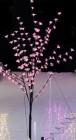 Дерево светодиодное ST Сакура LED крас+бел,1,5м,черн. пр. 5м,с трансф. 24В IP44,BLEDA144-11R&W SCTH
