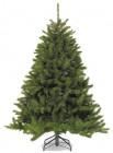 Ель TRIUMPH TREE Триумф Лесная красавица 120 см 73271/788039