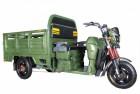 Электротележка грузовая (трицикл) RUTRIKE Антей-У 1500 60V1200W Зеленый-1960